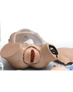 Gelişmiş OB Susie® Doğum Maketi