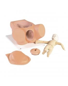 Doğum Simülatörü