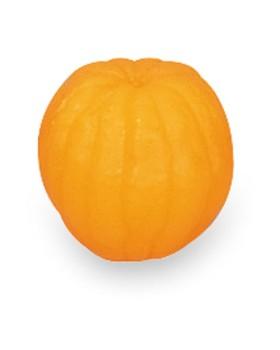 Portakal Besin Replikası