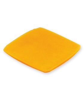 Amerikan Peyniri Besin Replikası
