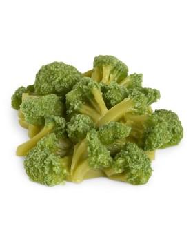 Brokoli Besin Replikası - 1 Bardak (240 ml)