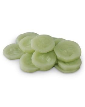 Salatalık Besin Replikası